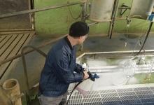 SC-UNO-5M_milking-pit_02